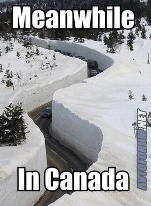 medtem-v-kanadi